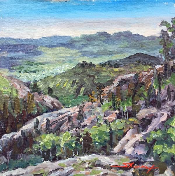 Colorado Plein Air by Sharon Rusch Shaver