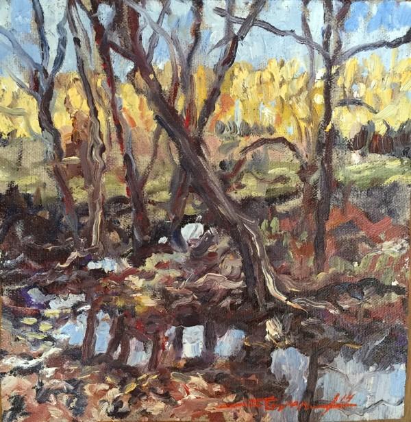 Deshea Creek by Sharon Rusch Shaver