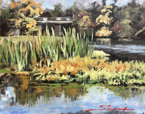 Plein Local Park by Sharon Rusch Shaver
