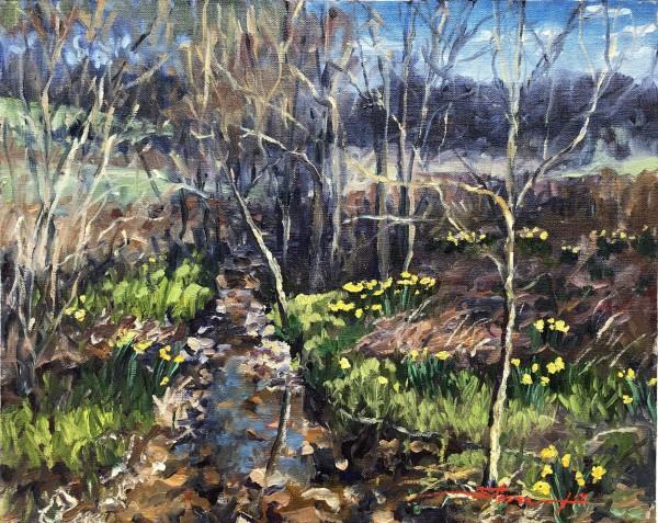 Daffy Creek by Sharon Rusch Shaver