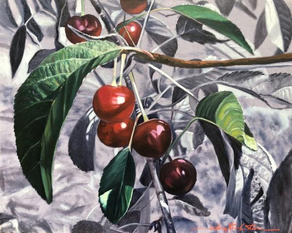 Cherries by Sharon Rusch Shaver