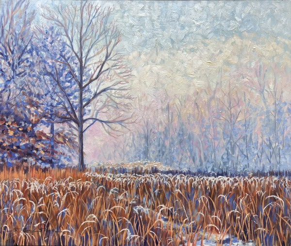Frozen Meadow by Sharon Rusch Shaver
