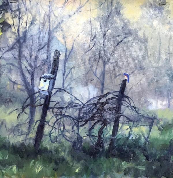 Bluebird Dawning by Sharon Rusch Shaver