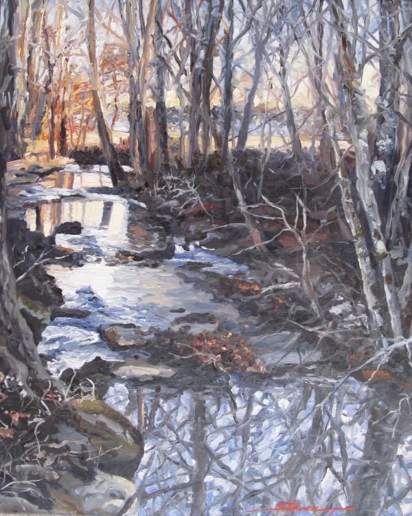Winter Speaks by Sharon Rusch Shaver