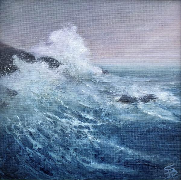 Shameless swell by Sarah Jane Brown