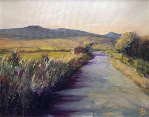 Evening walk by Sarah Jane Brown