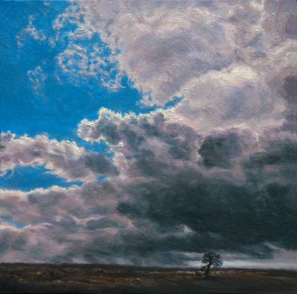 Sheltering Cloud Restless Land Desolate Tree by Katherine Kean