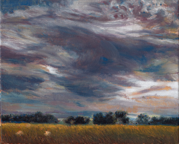 Scotland Clouds, Field, Sheep Study by Katherine Kean