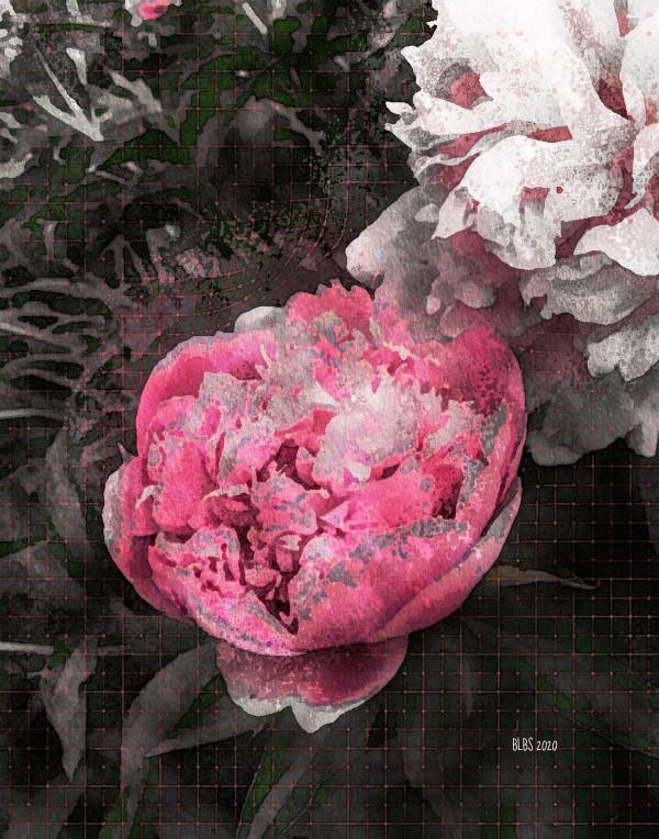 Enchanted Garden by Barbara Storey
