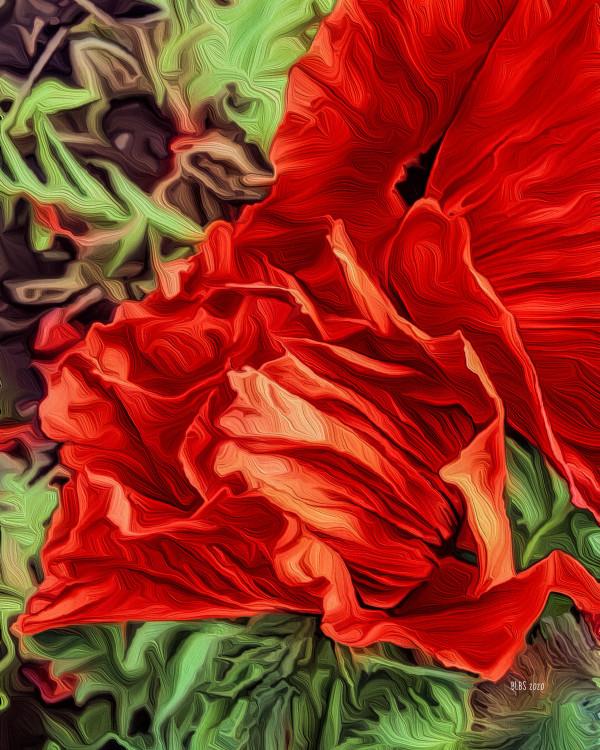 Poppy, after O'Keeffe by Barbara Storey