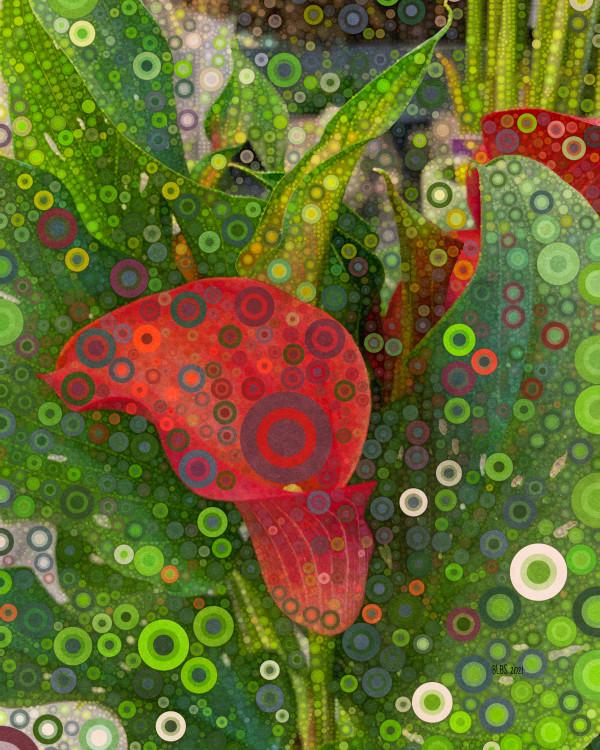 Red Calla Lily by Barbara Storey