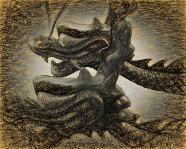 The Dragon Race by Barbara Storey