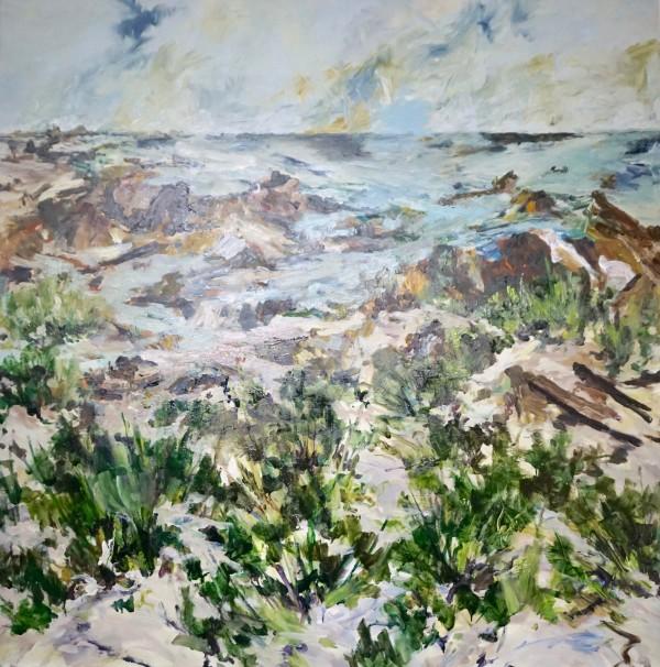 Tarkine Coast by Gillian Hughes