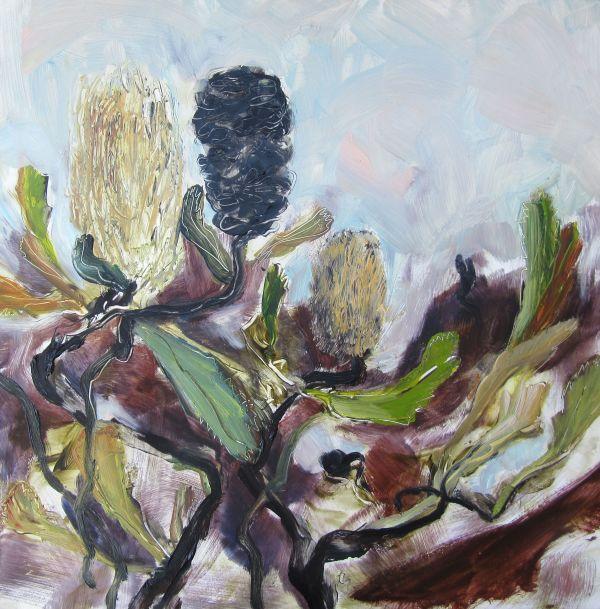 Banksia Serrata by Gillian Hughes
