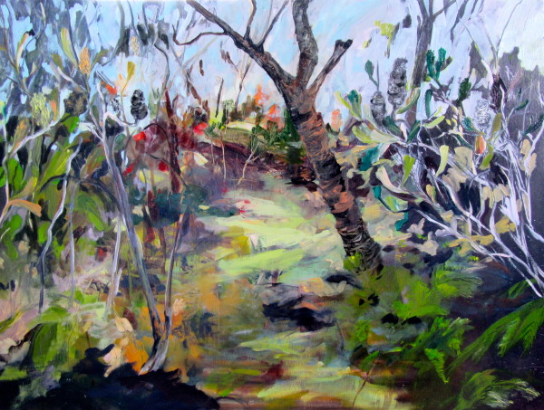 Sir Joseph Banks' Wanderings by Gillian Hughes