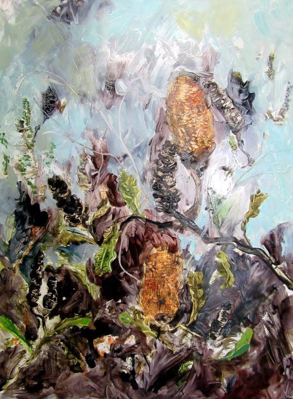 Botany Banksia by Gillian Hughes