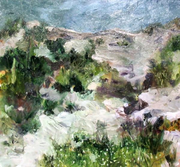 Wildflowers on the Headland by Gillian Hughes