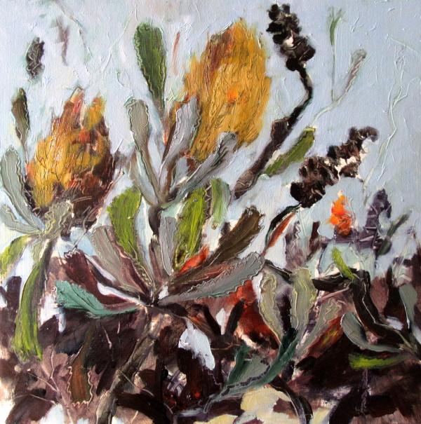 Banksias by Gillian Hughes