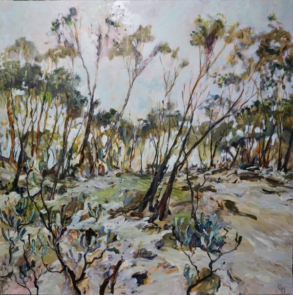Bushland with Banksias by Gillian Hughes