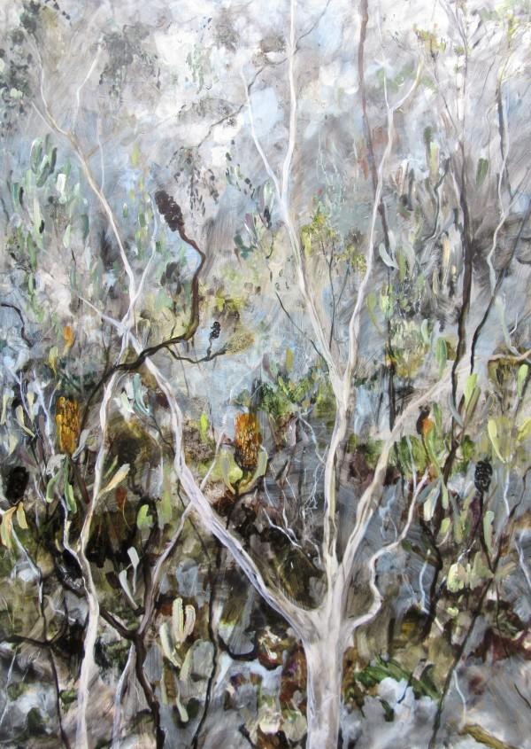 Botany - A Walk through the Trees by Gillian Hughes