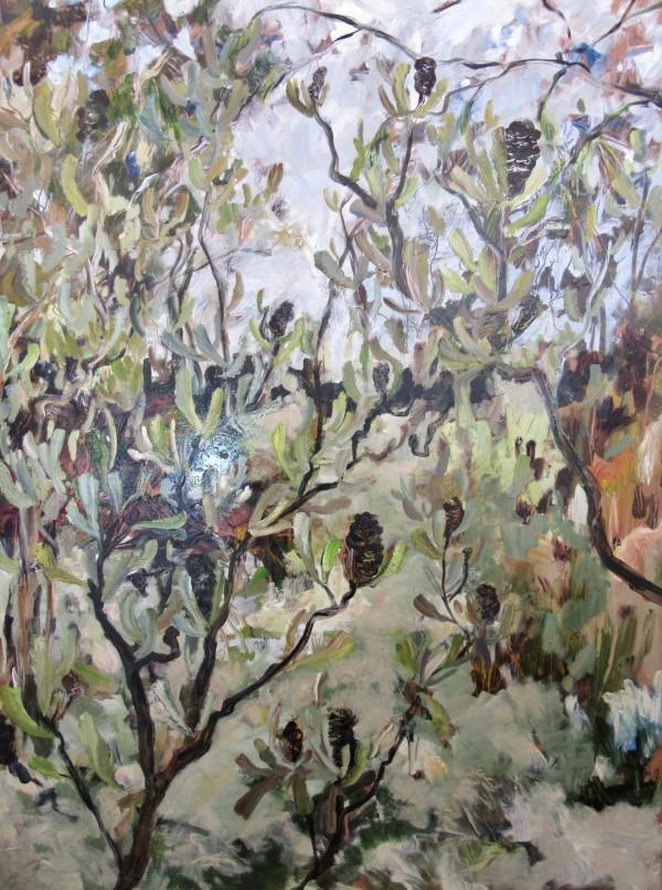 SJB - A Walk Through the Trees by Gillian Hughes