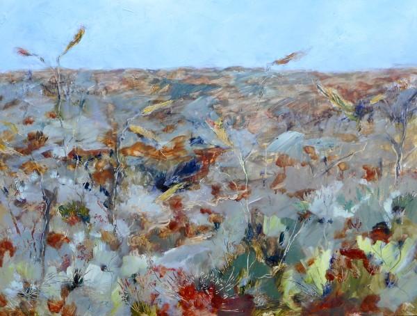 Honey Grevillea - Uluru by Gillian Hughes