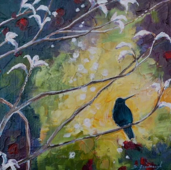 Solitary Illumination by Sarah Goodnough