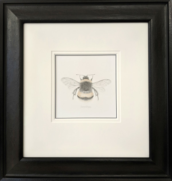 BumbleBee vii by Louisa Crispin