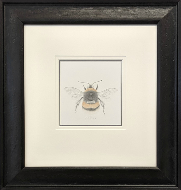 BumbleBee viii by Louisa Crispin