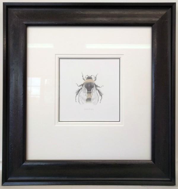 BumbleBee ii by Louisa Crispin