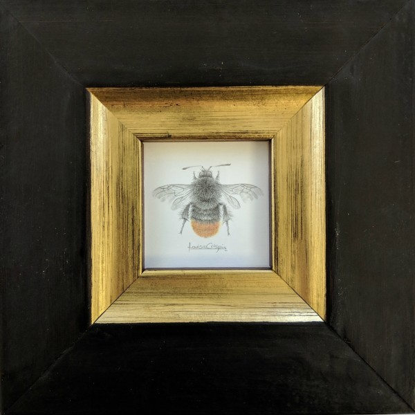 Flame Bee by Louisa Crispin
