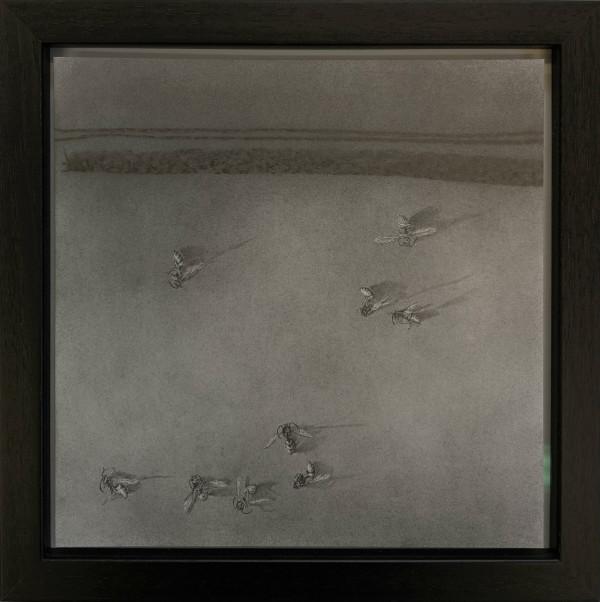 Flight Path xxxii by Louisa Crispin