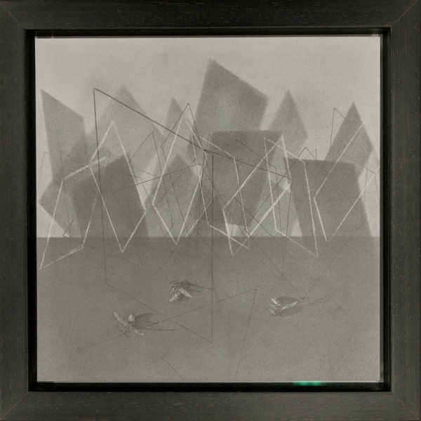 Flight Path xxiv by Louisa Crispin