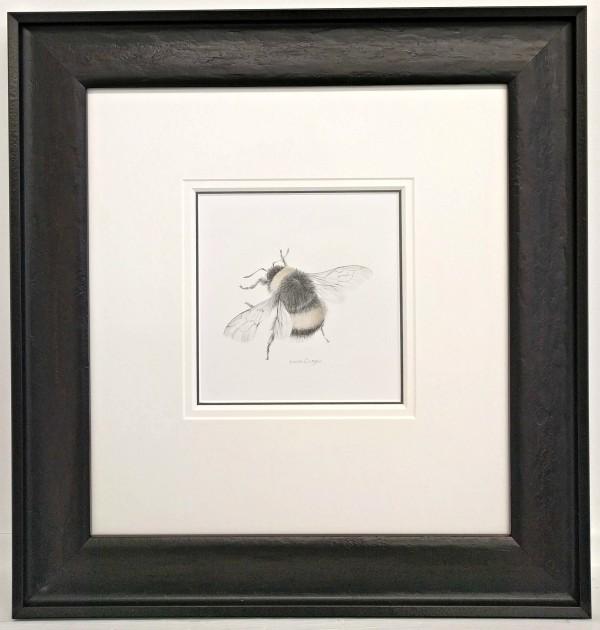 BumbleBee vi by Louisa Crispin