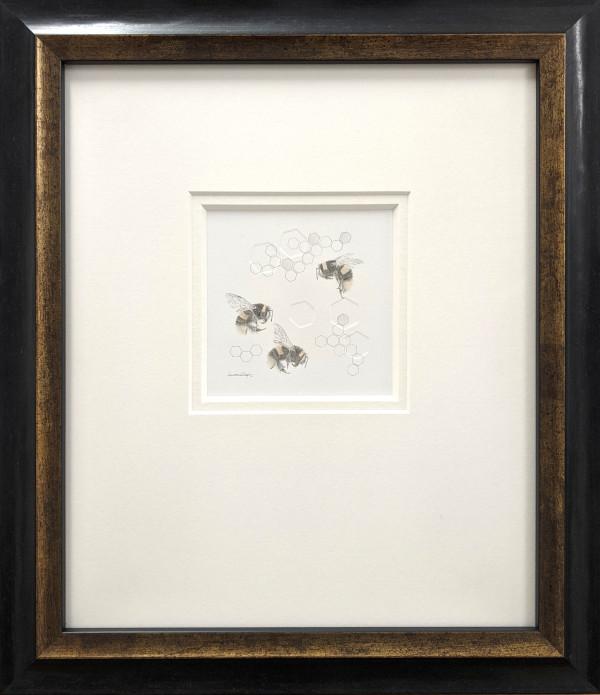 Buff tailed BumbleBee 3.34se