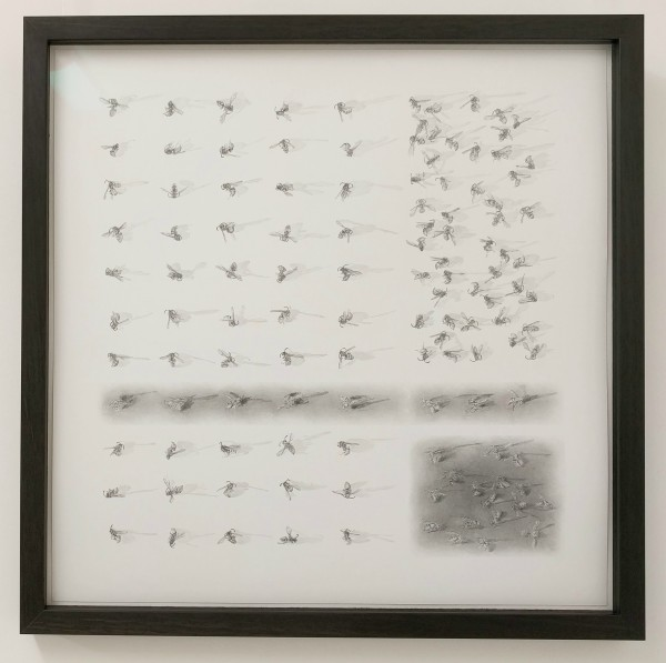 FlightPath i by Louisa Crispin