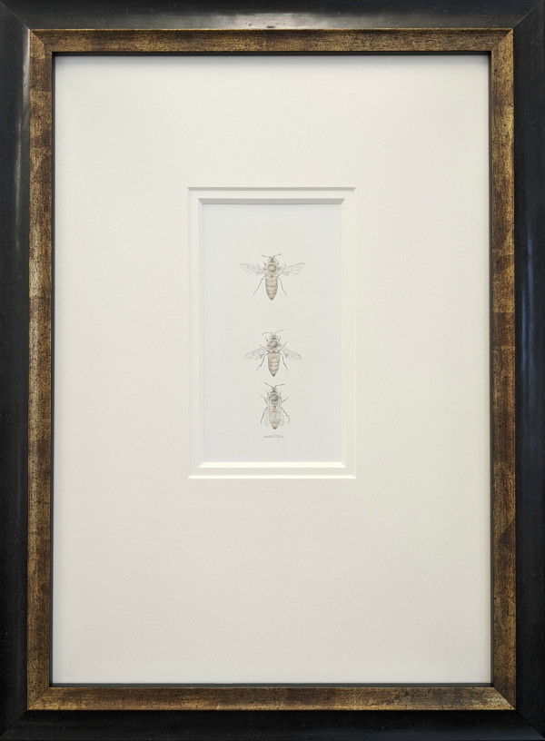 Honey Bee 3.24 by Louisa Crispin