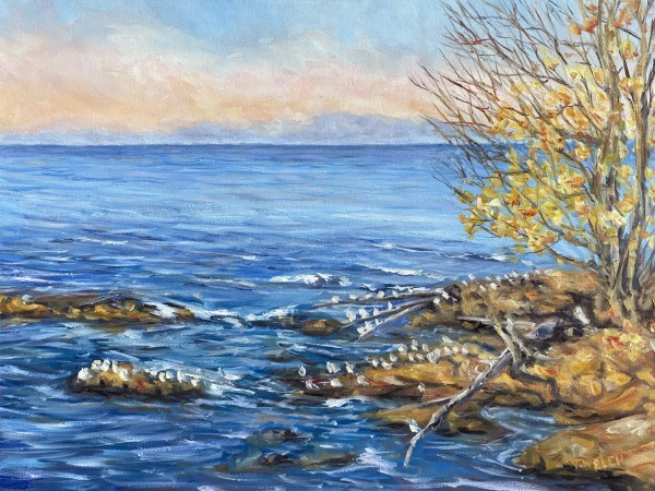 Golden Evening Across the Strait of Georgia by Terrill Welch