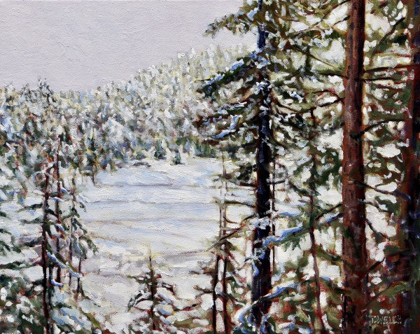 Valley with Fresh Snow by Terrill Welch