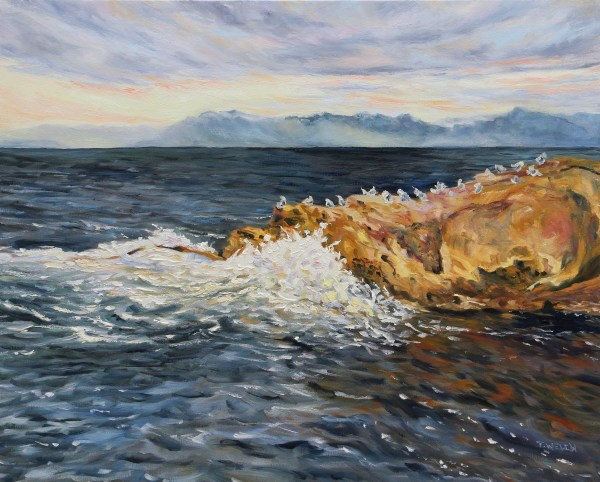 A Dramatic Salish Sea by Terrill Welch