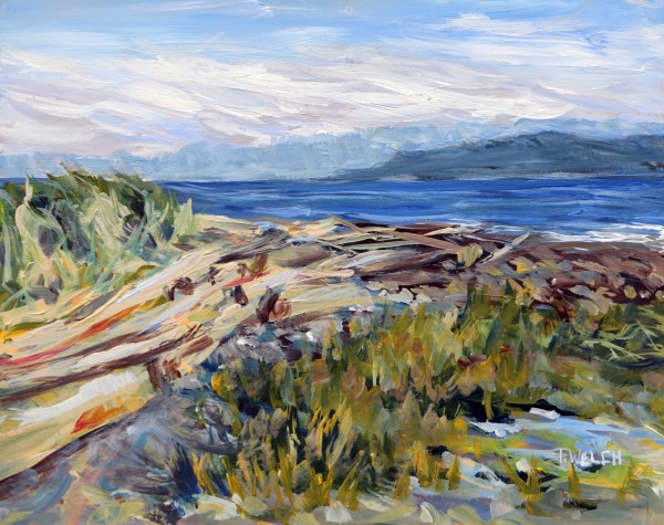 A Grassy Point Morning on Hornby Island by Terrill Welch