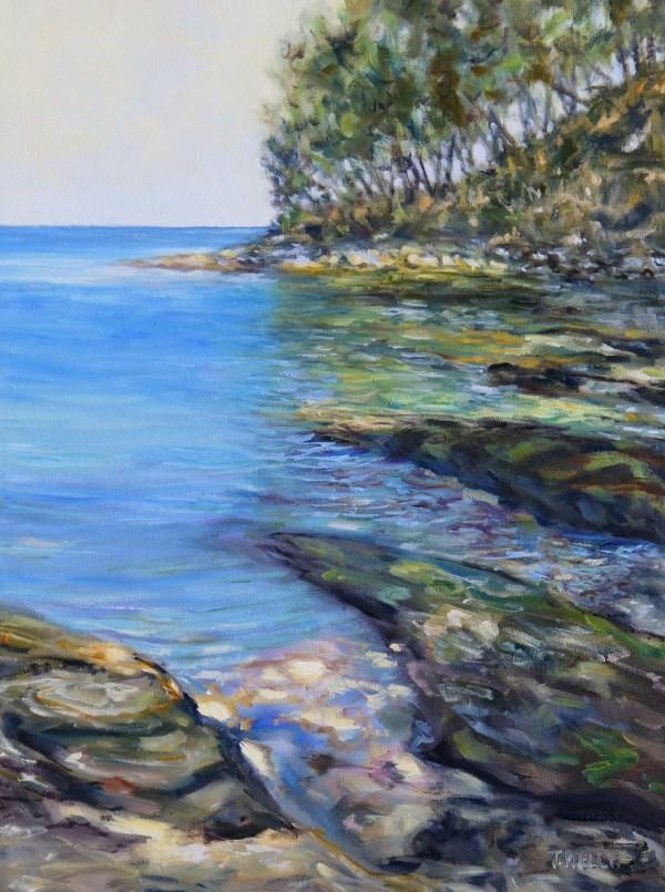 A small Emerald Bay Mayne Island B.C.  by Terrill Welch