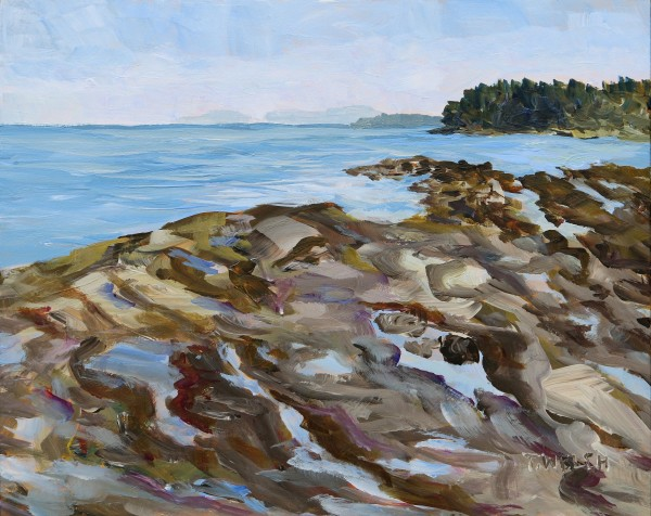 Another Reef Bay Morning Study by Terrill Welch