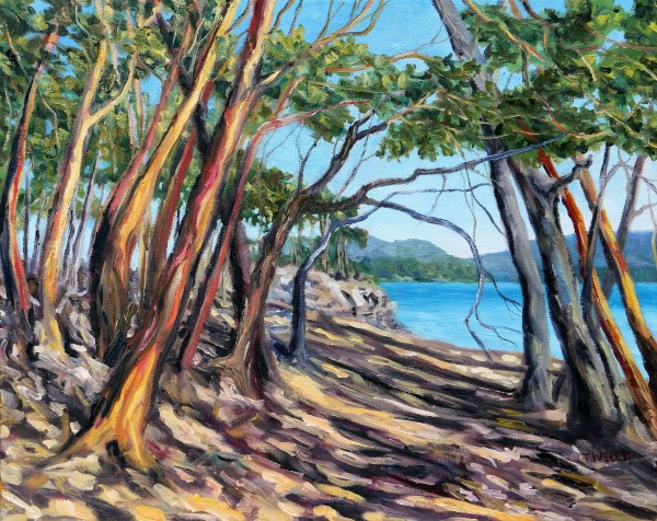 Arbutus Grove East by Terrill Welch