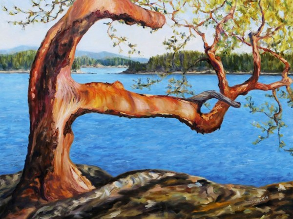 Arbutus Tree Reaching by Terrill Welch