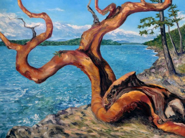 Arbutus Tree in Breaking Sun by Terrill Welch