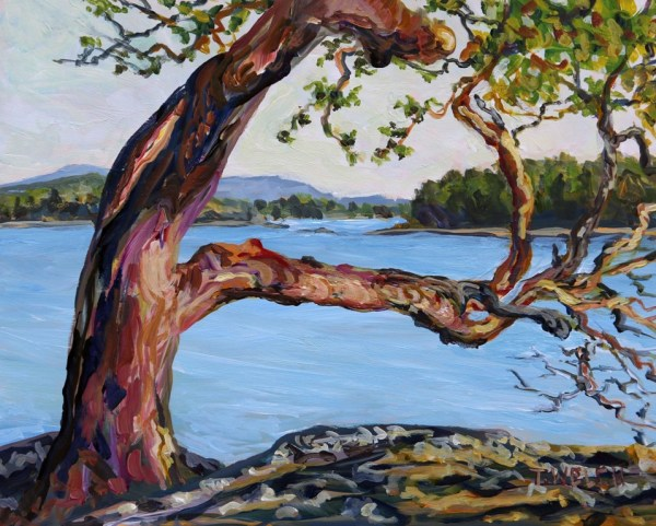 Arbutus Tree with a View by Terrill Welch