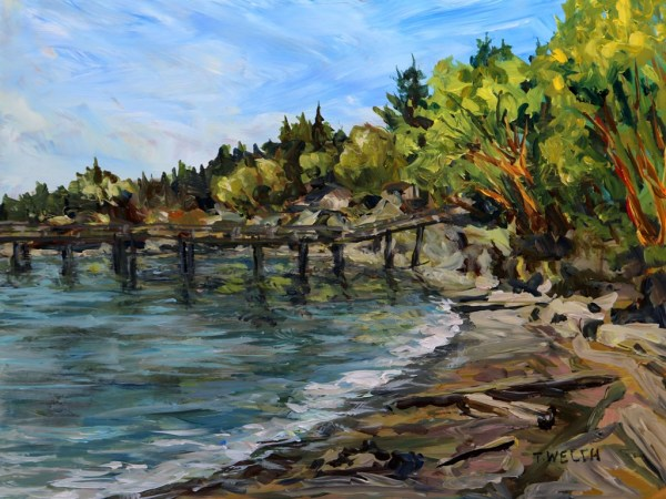 Bennett Bay Mayne Island by Terrill Welch