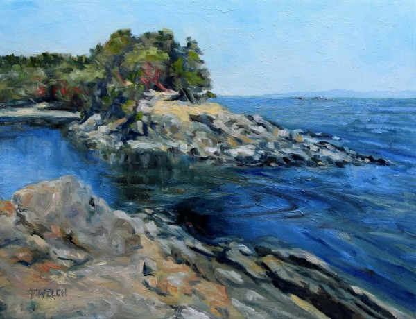Canoe Pass at Winter Cove by Terrill Welch