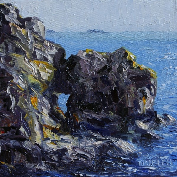 Castle Rocks at Creyke Point by Terrill Welch